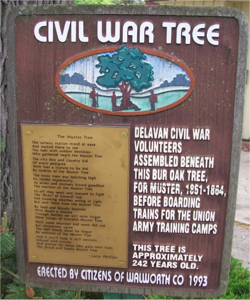 Civil War Tree sign
