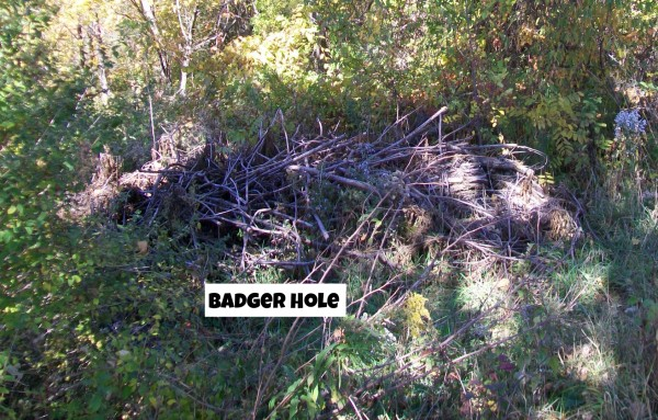 Badger hole