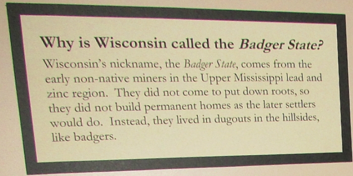 Badger origin