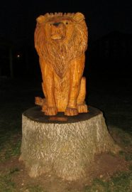 Marshall Lion at Lions Park