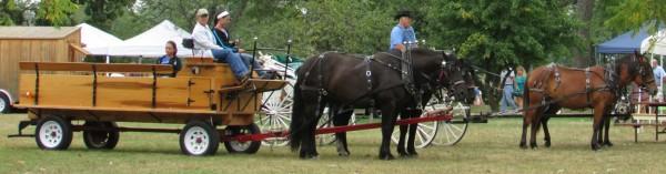Horse -Drawn Rides