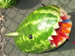 Watermelon shark