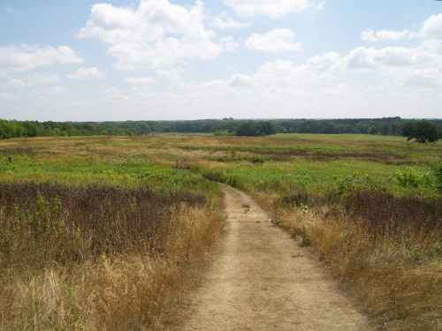 Illinois Prairie