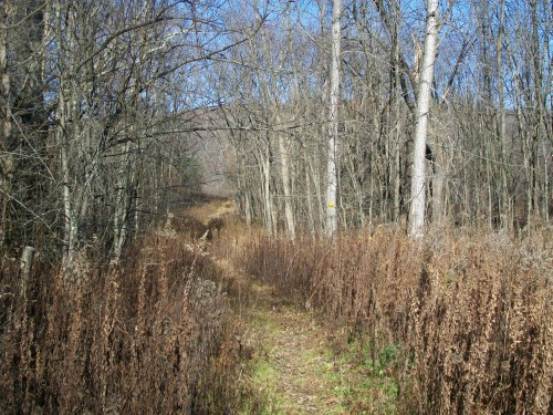 Baxter's Hollow trail - North Freedom