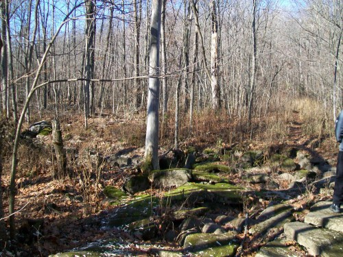 Otter Creek bed