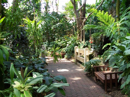 Bolz Conservatory Inside