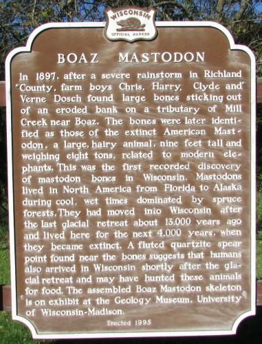 Boaz Mastadon marker