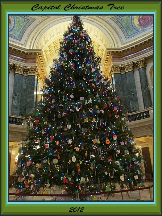 Wisconsin Capitol Xmas Tree 2012