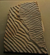 rippled rock