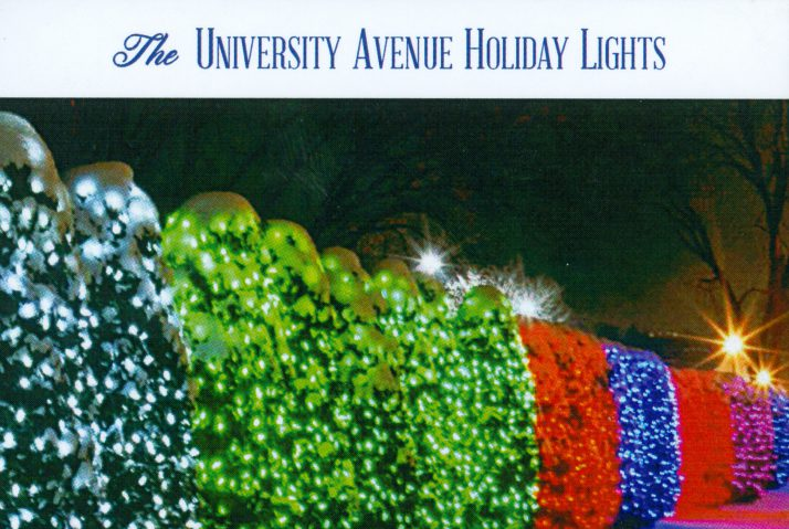 University Avenue Holiday Lights In >> A Madison Tradition Since 1996 University Avenue Holiday Trees