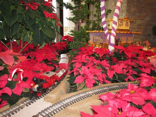 Holiday Express display