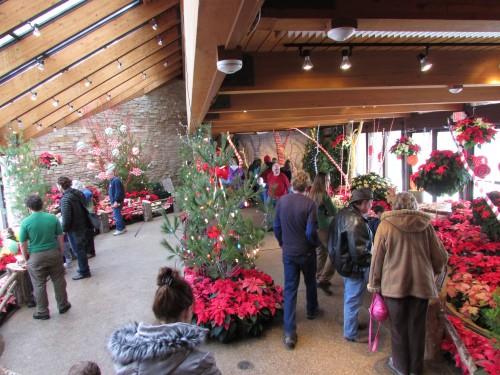 Candyland  Olbrich Atrium