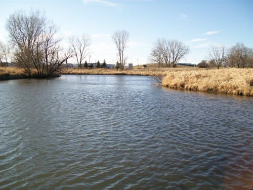 Token Creek Pond