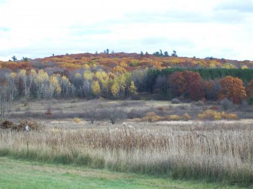 Steinke Basin trailhead view