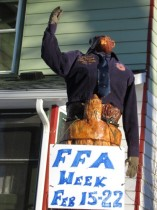 FFA Beaver