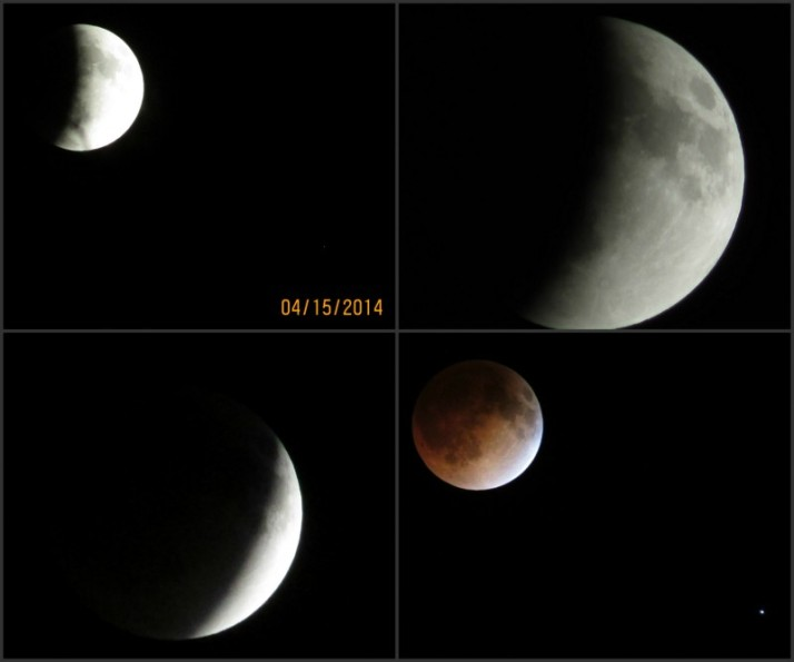 Lunar Eclipse Collage