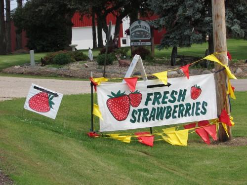 Strawberry Farm sign DeForest