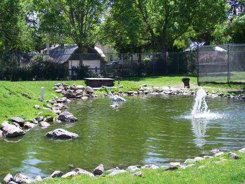 Ochsner Zoo pond Baraboo