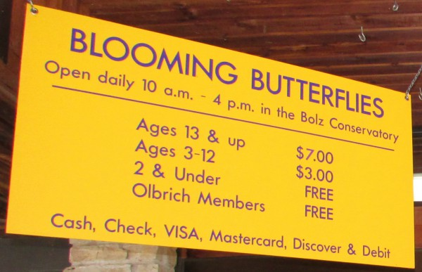 Blooming Butterflies cost