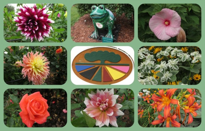Dubuque Garden Collage