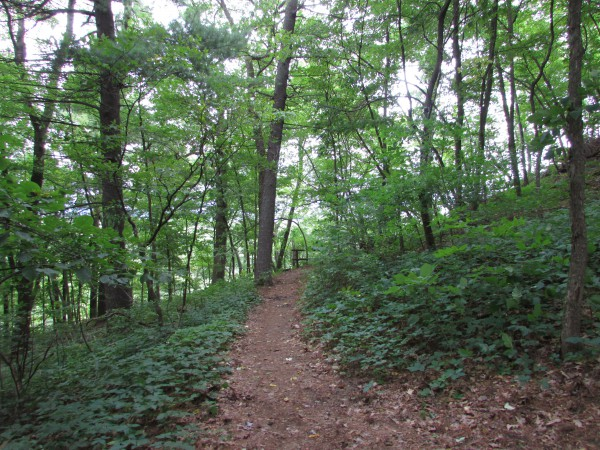Shot Tower trail at Tower Hill
