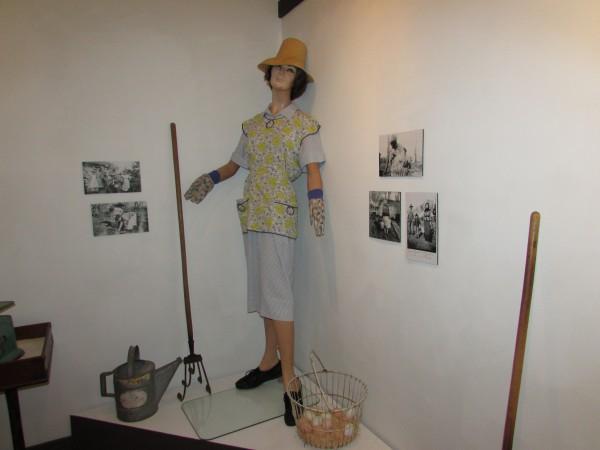Farm display at Monticello Museum