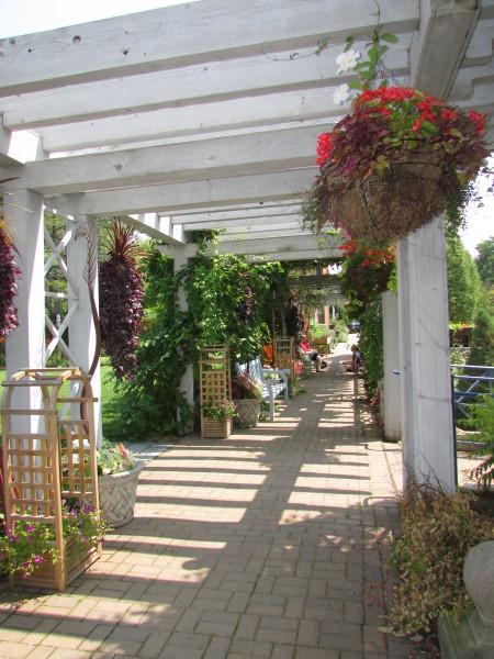 Arbor Terrace at Allen Gardens
