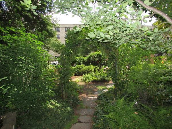 Wisconsin Woodland Garden Allen Gardens
