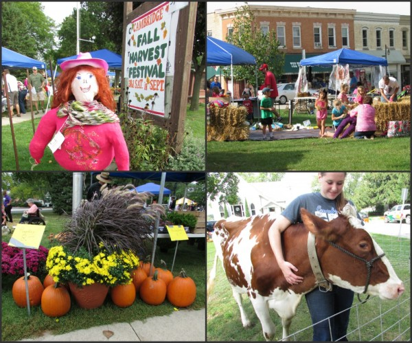 Cambridge Fall Festival Collage