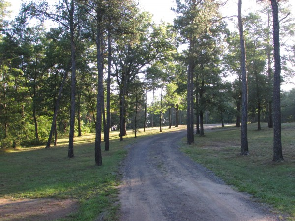 Lake Wazee campsite road in Black River Falls