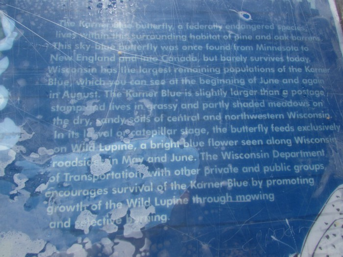 Karner Blue sign in Millston