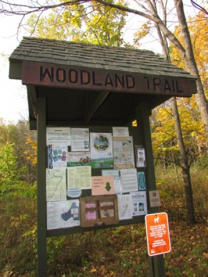 Woodland Trail at Gov Nelson State Park