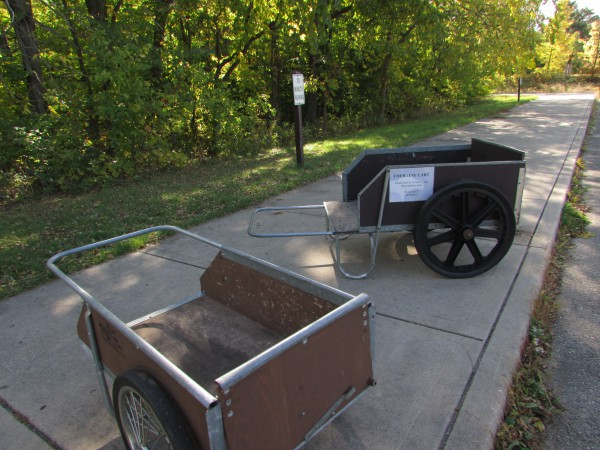 Gov Nelson carts