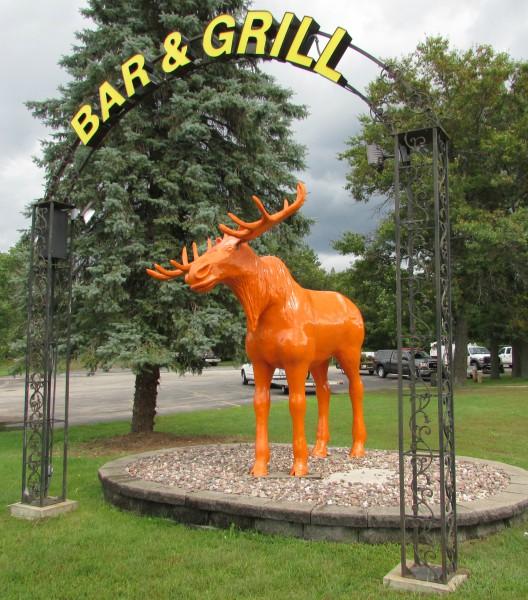 Smaller Orage Moose in Black River Falls