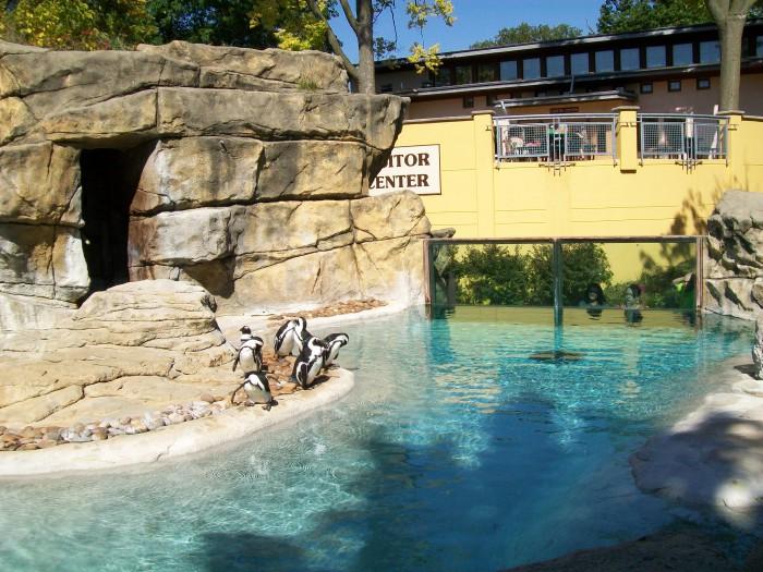 Penguin Parlor at Vilas 10-4-11