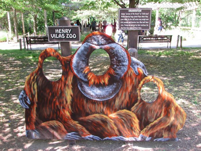 Orangutan Cut-out for pictures at Vilas