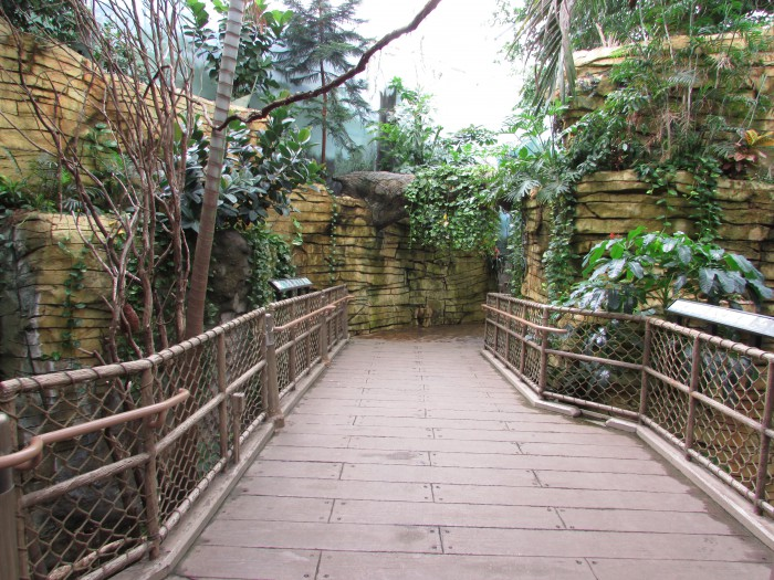 Inside Tropical Aviary at Vilas