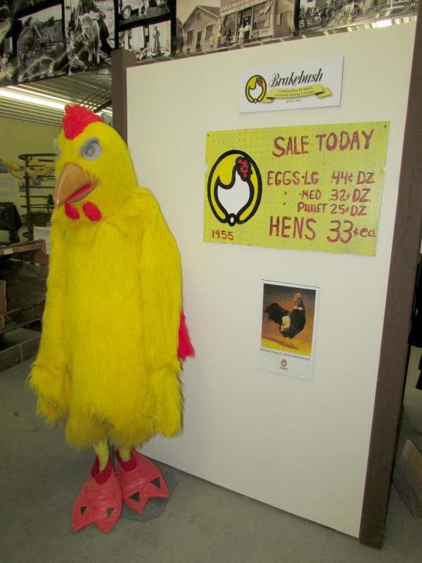 Brakebush Chicken display in Westfield