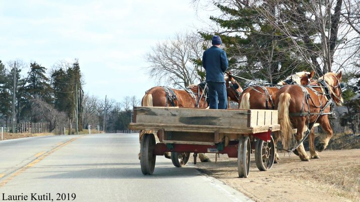 Amish Shopping In The Grand River Valley In Wisconsin