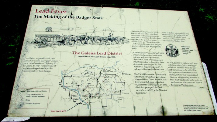 Lead Fever Sign in Hazel Green