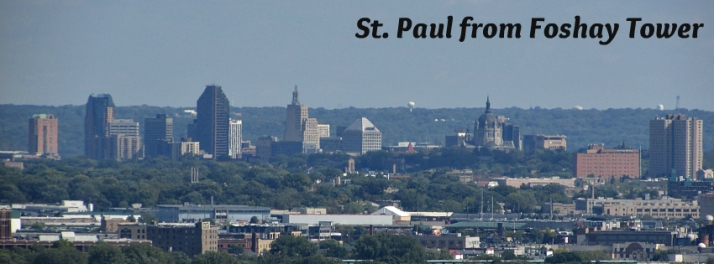 St. Paul from Foshay Tower