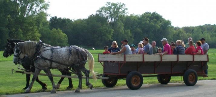 Burke Picnic wagon rides