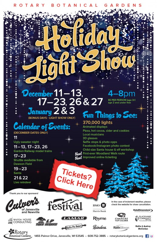 Holiday Light Show poster