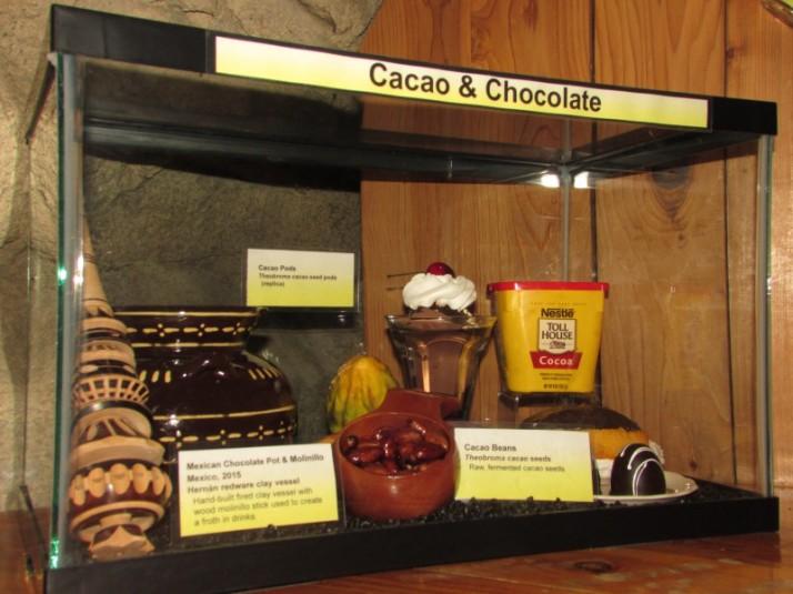Cacao and Chocolate display IMG_8677