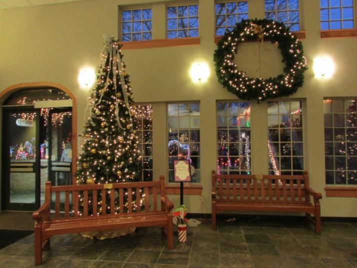 Christmas Tree selfie stop IMG_9329