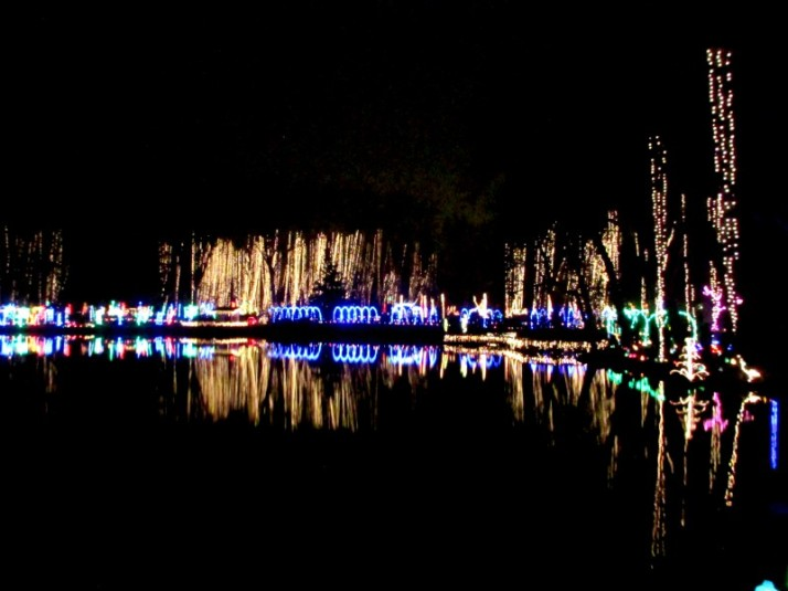 Rotary Pond IMG_9396 brighter
