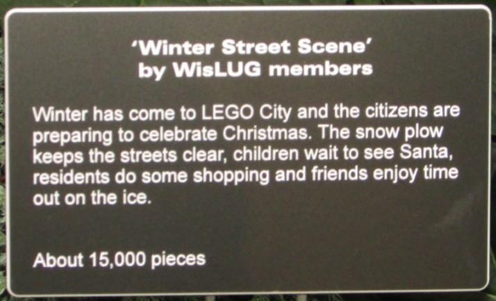 Winter Street Scene IMG_8614