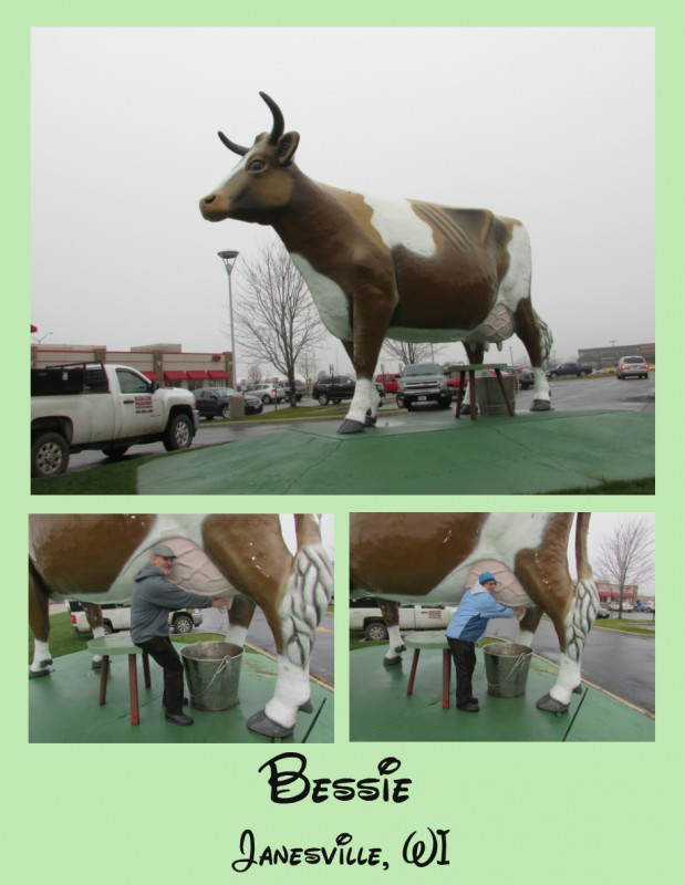 Bessie the Cow in Janesville