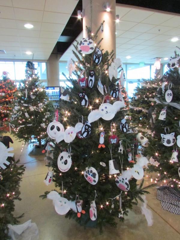 Christmas trees IMG_0185