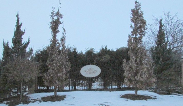 Allen Gardens Sign in winter